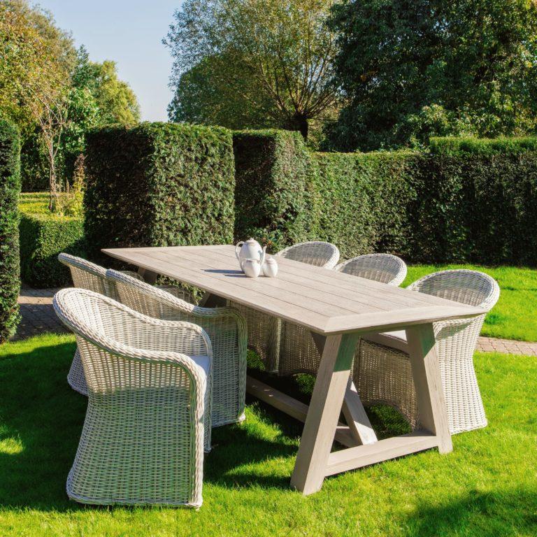 darwin wicker chair teak table