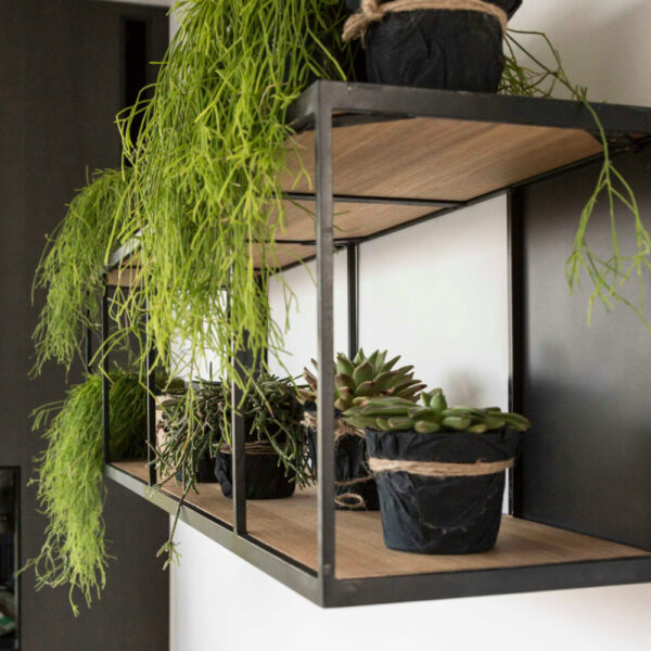 rubic long wall shelf hanging plants